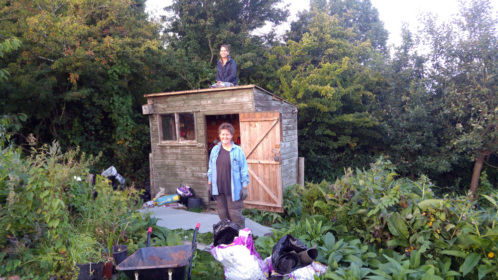 shed roof getting repaired by volunteers